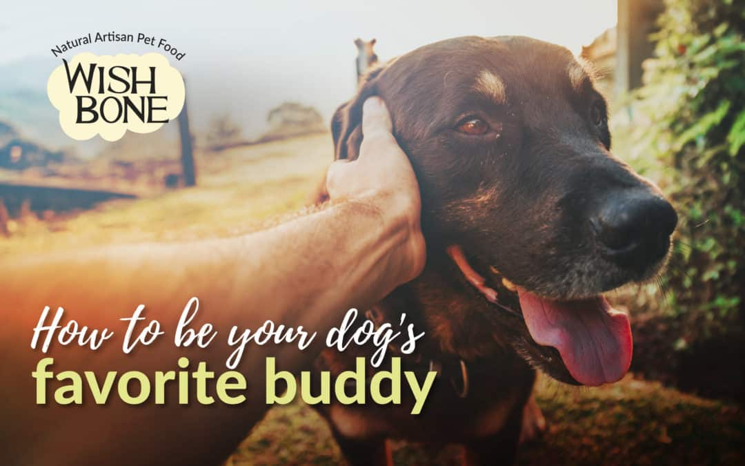 How to be your dog's favorite buddy